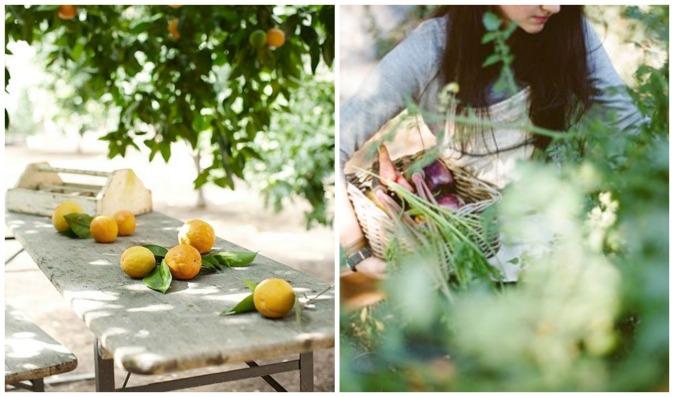Summer gardenCollage