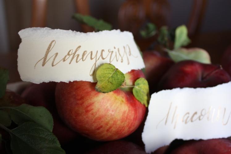 Apple Picking Decor Inspiration
