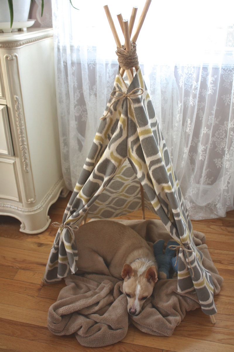 Diy child or pet teepee dreamery events for Diy cat teepee