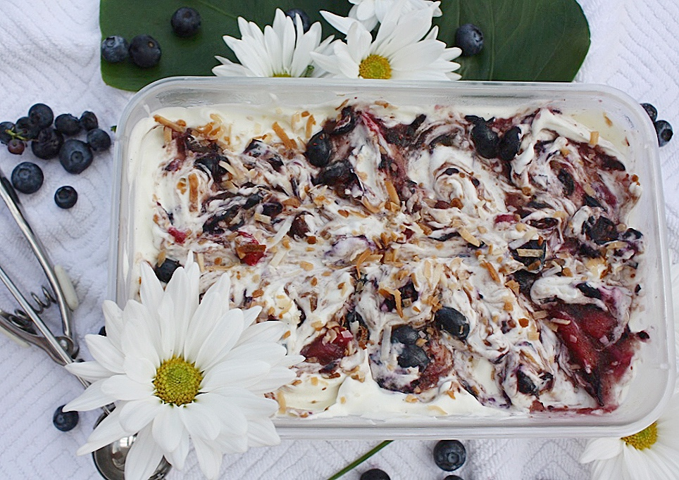 No Churn Blueberry & Coconut Ice Cream | Dreamery Events