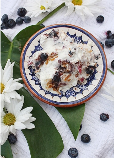 No Churn Blueberry & Coconut Ice Cream | Dreamery Events
